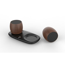 TwinSound Stereo Bluetooth Speakers and Charging Station